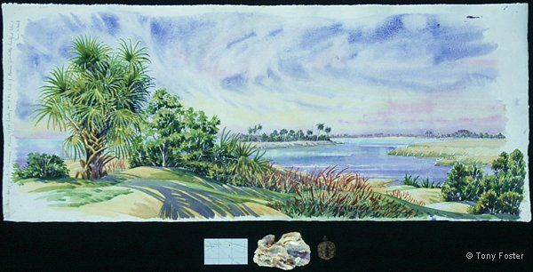 Last Days on the Suwannee River · looking N to the Gulf of Mexico from Little Bradford Island · -  13'' x 31   2'' x 6''