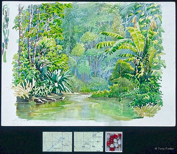 · Rio Plátano I · Camp 2 looking downriver · -  10'' x 14'' / 2'' x 4''