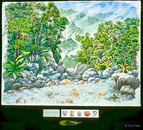 El Rio Cangreahal looking upriver below Don Pepés · 4 days · -  21½'' x 30''   3'' x 8''