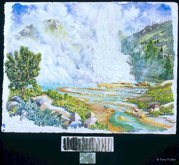 Imperial Geyser looking 320º NW · -  21½'' x 29''   4'' x 8'' -